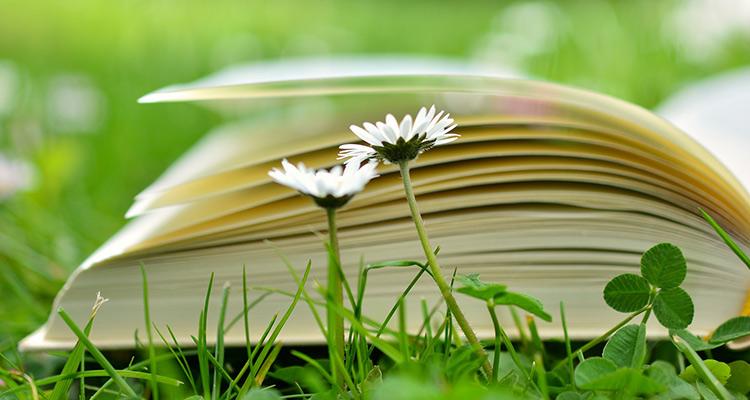 Qué es la educación no formal - Libros