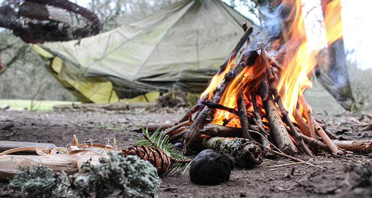 Intercambio entre scouts - Portada