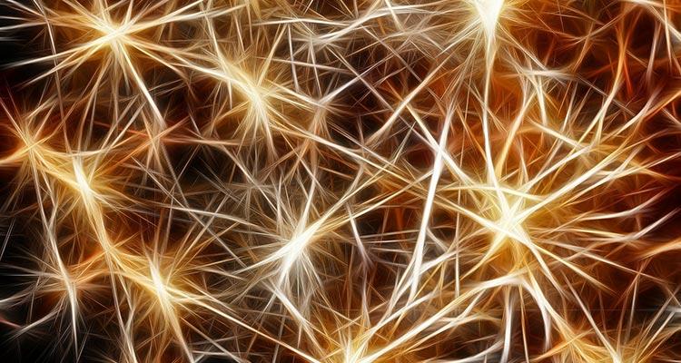 Sabías que el intercambio cultural estimula la creatividad - Neuronas